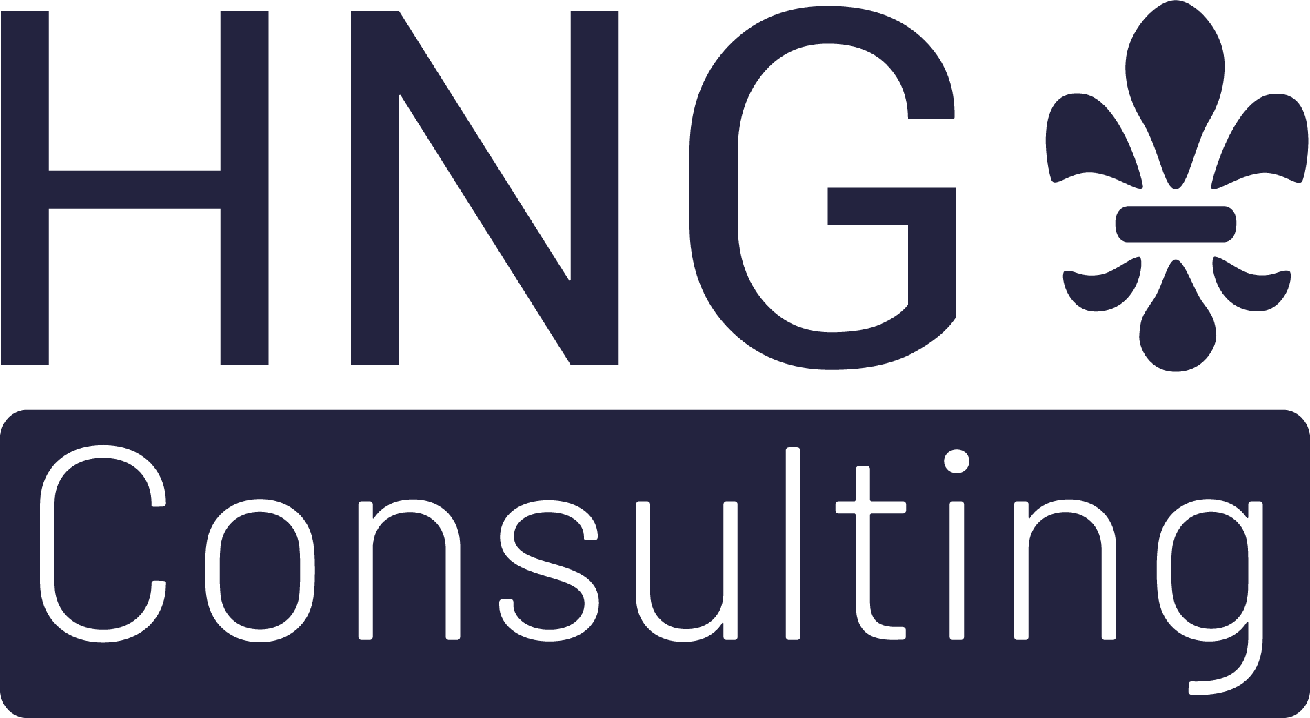HNG-Consulting